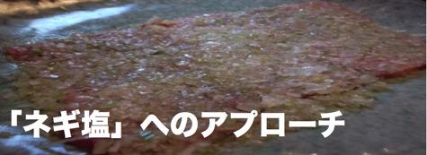 negishio_title.jpg