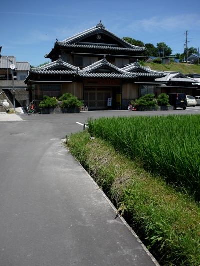 shikoku-1.jpg
