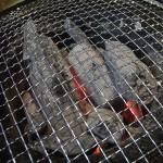 なぜか多い本格炭(南東北遠征雑感)