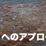 ネギ塩へのアプローチ